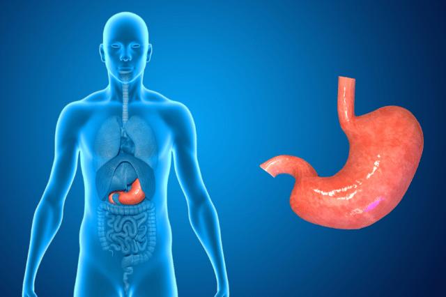 団体信用生命保険 胃・腸系の病気