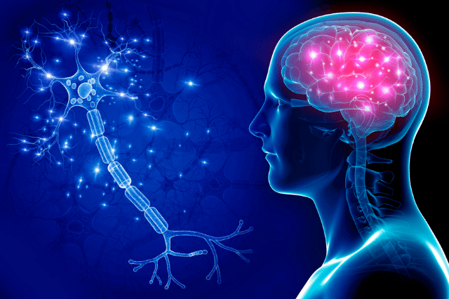 団体信用生命保険 脳系の病気